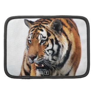 Vida salvaje de los tigres planificador
