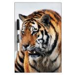 Vida salvaje de los tigres pizarras blancas de calidad