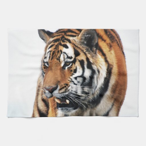 Vida salvaje de los tigres toalla de mano