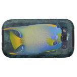 Vida subacuática; PESCADOS:  Angelfish de la reina Galaxy SIII Coberturas