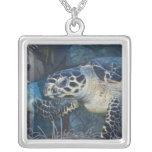 Vida subacuática: Una tortuga de mar de Hawksbill Colgante Cuadrado