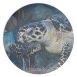 Vida subacuática: Una tortuga de mar de Hawksbill Plato Para Fiesta