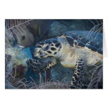 Vida subacuática: Una tortuga de mar de Hawksbill Felicitación