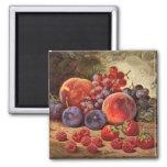 Vida todavía de la fruta fresca imanes de nevera