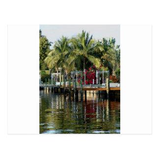 Vida tropical tarjetas postales