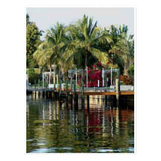 Vida tropical postales