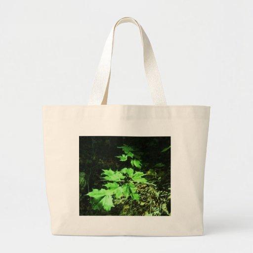 vida vegetal 2 del pgoto bolsa tela grande