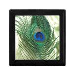 Vida verde del travesaño del pavo real de Apple Cajas De Joyas