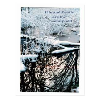 Vida y muerte tarjetas postales