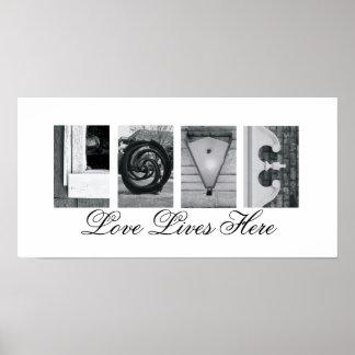 Vidas aquí 10x20 del amor de la fotografía de la póster