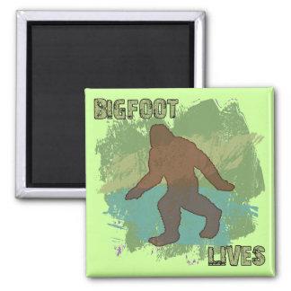 Vidas de Bigfoot Imán Cuadrado