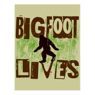 Vidas de Bigfoot Tarjetas Postales