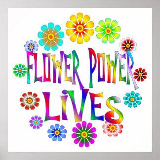 Vidas del flower power póster