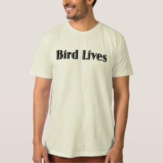 Vidas del pájaro playeras