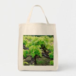 Vides de uva bolsa de mano