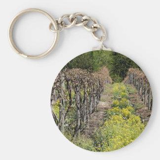 Vides de uva en llavero de la primavera