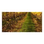 Vides del otoño tarjetas con fotos personalizadas