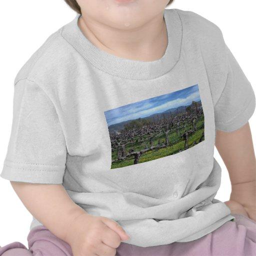 Vides en el invierno Napa California Camisetas