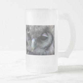 Vidrio lindo del búho taza de cristal