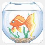 Vidrio lindo del goldfish im calcomania cuadradas