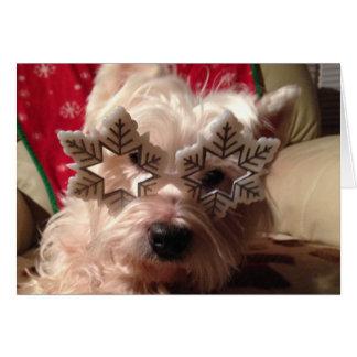 Vidrios del copo de nieve para el este invierno de tarjeta de felicitación