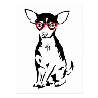 Vidrios del rojo de la chihuahua del inconformista tarjeta postal