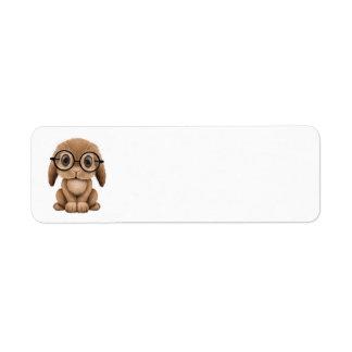 Vidrios que llevan de Brown del conejito lindo del Etiqueta De Remite