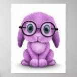 Vidrios que llevan del conejito púrpura lindo del