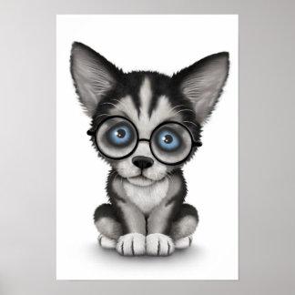 Vidrios que llevan del perrito lindo del husky póster