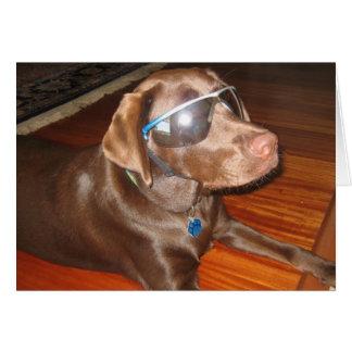 Vidrios que llevan del perro tarjeta de felicitación