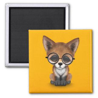 Vidrios que llevan rojos lindos del Fox Cub en Imán Cuadrado