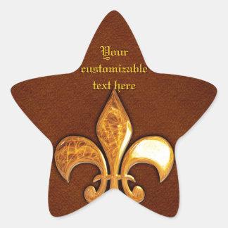 Vieja cubierta de cuero con la flor de lis de oro calcomanía forma de estrellae