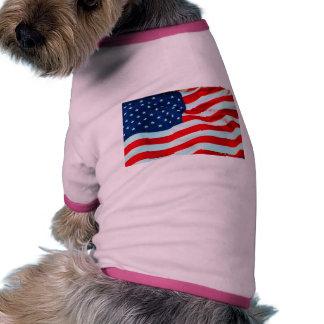 Vieja gloria en la brisa ropa perro