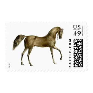Vieja imagen del caballo de la impresión estampillas
