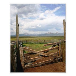 Vieja puerta del corral cojinete