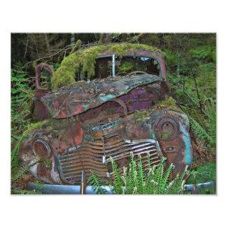 Vieja ruina del coche en la foto del bosque fotografía