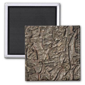 Vieja textura de la corteza de árbol imán cuadrado