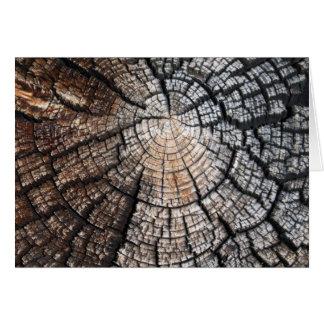Vieja textura de madera fresca felicitaciones