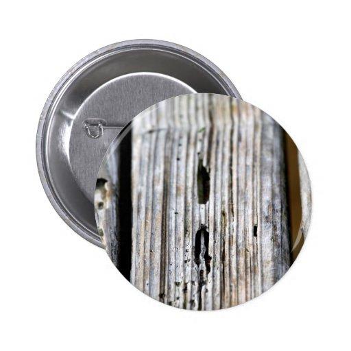 Vieja textura de madera pin