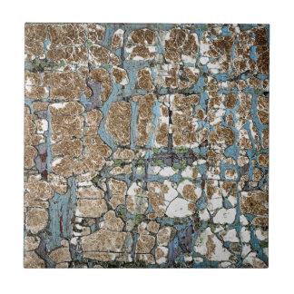 Vieja textura de madera pintada azulejo cuadrado pequeño