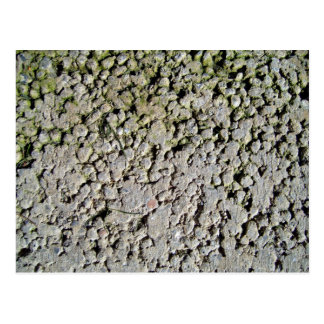 Vieja textura de piedra con el musgo tarjetas postales