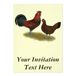 Viejas aves inglesas del faisán comunicados personalizados