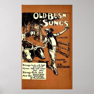 Viejas canciones de Bush Póster