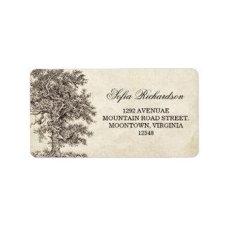 viejas etiquetas de dirección del árbol del