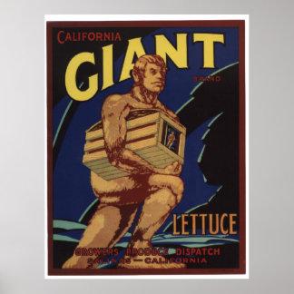 Viejas etiquetas gigantes del cajón de las póster