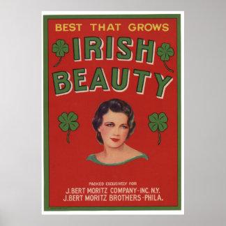 Viejas etiquetas irlandesas del cajón de la fruta póster