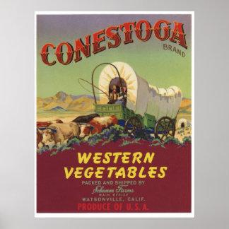Viejas etiquetas occidentales del cajón de las ver poster