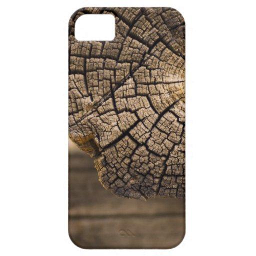 Viejas texturas de madera de la cabina iPhone 5 Case-Mate fundas