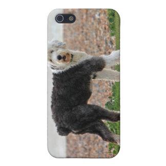 Viejo caso inglés del iphone 4 del perro del perro iPhone 5 protectores