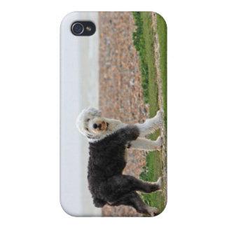 Viejo caso inglés del iphone 4 del perro del perro iPhone 4 carcasa